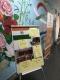nonviolent_india_5