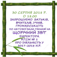 Щорічний звіт директора КГСМ №1